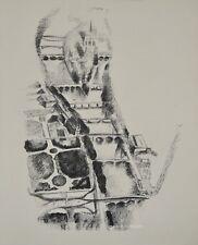 Robert DELAUNAY - lithographie originale - Paris, la Seine et l'ile de la Cité