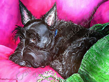"Scottish Terrier Print ""Do Not Disturb - Scottie Nap- Dog Art by Cherry O'Neill"
