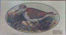 Single: No.33 SANDPIPER & EGGS - WILD BIRDS (Transfers) John Player 1932