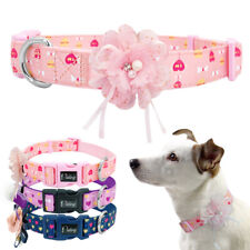 Fancy Flower Decorated Dog Collar Female Girls Necklace Adjustable Small Large