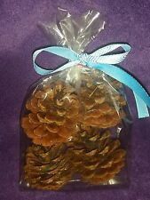 4 Pk Of Pine Cone Chew Toy 4 rabbits,guinea pigs and more