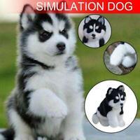 Realistic Husky Dog Simulation Toy Dog Puppy Lifelike Stuffed Toys BEST