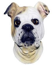 Bulldog masque chien Latex Par la tête britannique Déguisements animaux canin