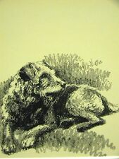 Cleanthe AIREDALE 1933 Dog Art Print Matted
