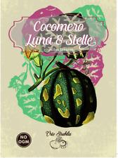 cocomero luna e stelle,citrullus lanatus,semi rari,semi strani, gr 2 15/20 semi