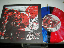 """Anti-Flag + Hostage Calm - split 7"""" colored vinyl etched Run For Cover download"""