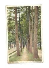 CONCORD MA Sleepy Hollow Path Vintage WB 1928 Postcard