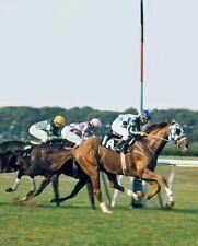 SECRETARIAT & RON TURCOTTE - ORIGINAL HORSE RACING PHOTO 1973 MAN O' WAR STAKES!