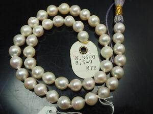 hochwertige Zuchtperlen - Strang mit 41 cm Länge, Perlen 8,5 - 9 mm / b828