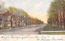 Ludington Michigan~Nice Victorian Homes on East Ludington Avenue~1906 Postcard