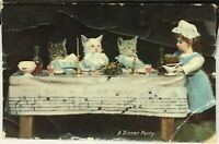 Postcard Vintage Animal Cat A Dinner Party - posted 1908
