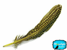 10 Pieces - YELLOW Polka Dot Guinea Fowl Wing quills Feathers