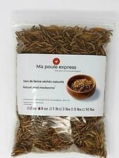 8 oz - Hen Express Dried Mealworms for Wild Birds etc. Approx. 8,000 Mealworms