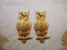 Large Raw Brass Owl Stampings (2) - GB6076