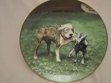 Pete'S Pal collector plate The Little Rascals Rare only 10 firing days Dog Goat