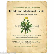 Identifying and Harvesting Edible and Medicinal Plants - Foraging Survival Guide