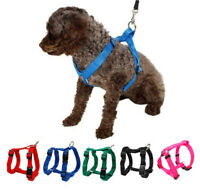 Nylon Puppy Small Pet Dog Harness Adjustable Free Shipping Black Red Green Blue