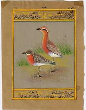 Bird Painting Miniature Handmade Ethnic Wall Hanging Watercolor Paper Painting