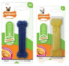 Nylabone Chicken Dental Bone Flavour Dura Chew Moderate Durable Dog Bone Toy