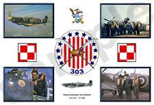 aviation art pilot photo colour WW2 303 Squadron print Zumbach Spitfire