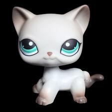 NEW #391 Littlest Pet Shop Cat LPS Short Hair Egyptian Grey Blue Eyes Animal