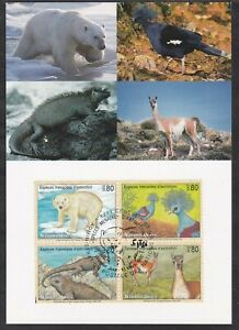 UNITED NATIONS GENEVA FIRST DAY COVER 1997 ENDANGERED SPECIES ON MAXI CARD