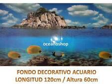 FONDO DECORATIVO CARIBIAN ACUARIO 120x60cm de altura terrario pecera D461