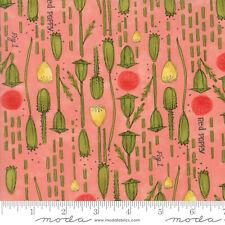 Poppy Mae 48602-14 Petal Pods Moda Robin Pickens  Priced Per ½ Yard