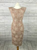 Womens French Connection Lace Cream Tailored Dress - Uk8 - Great Condition