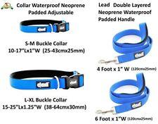 Laisse (standard) bleus en nylon pour chien
