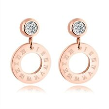 18K Rose Gold Roman Numerals Ear Studs Womens Titanium Steel Wedding CZ Earrings