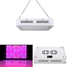 600W LED Grow Light Full Spectrum UV Veg Flower Indoor Plant Panel Double Chips