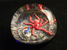 Elusive Legend Red Octopus Paperweight Glass Eye Studio Environmental 626 Ltd Ed