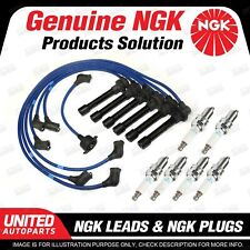 6 x NGK Spark Plugs + Ignition Leads Set for Honda Accord CM 3.0L V6