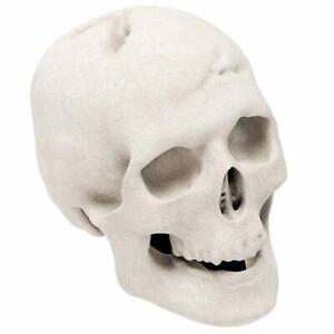 Regal Flame Ceramic Propane Gel Ethanol Gas Fireplace Fire Pit Logs White Skull