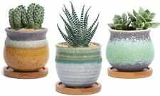 Ceramic succulent pot with bamboo tray,Small cactus planter for home and office