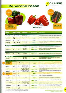 Clause Seeds Pepper Square Red Gothic f1 Envelope X 1000 Seeds