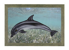 Porpoise Wall Decorations Acrylic Dolphin Reproduction Taxidermy Art