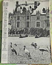 1957 Clères Seine-Maritime dans le parc du Château , Grue Couronnées art print