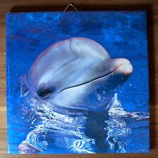 Dekofliese Wandbild Bildfliese Handarbeit Geschenkidee Fliese Delfin (044DP)