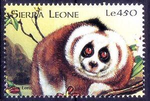 Sierra Leone 1998 MNH, Loris, Wild Animals