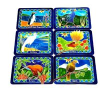 Jason New Zealand Native Birds Placemats Set 6 Wooden Cork Back Pukeko Kiwi Kea
