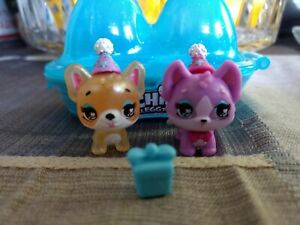 Hatchimals Colleggtibles Puppy Party Exclusives 2 PUPPY DOGS & HATS & CONTAINER