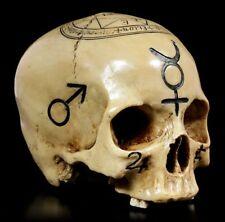 Totenkopf Witchcraft Skull - Deko Figur Schädel Ritual Totenschädel Magie