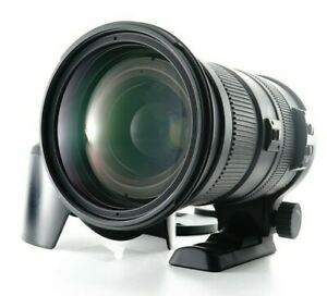 Near MINT SIGMA DG 50-500mm f/4.5-6.3 OS HSM DG Lens For Nikon FromJAPAN