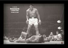 MUHAMMAD ALI VS SONNY LISTON LANDSCAPE 13x19 FRAMED GELCOAT POSTER BOXING CHAMP!