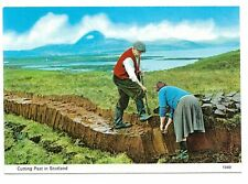 Cutting Peat in Scotland Unused Postcard 34N