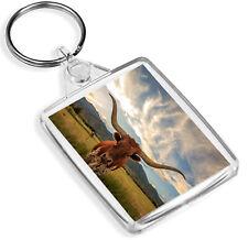Montana Cow Horns Keyring Cattle Herd Agriculture Keyring Gift #14569