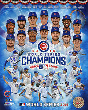 2016 Chicago Cubs World Series Champions 8x10 Team Authentic Composite Photo