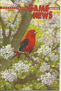 Pennsylvania Game News April 2014 cover by Stephen Leed male scarlet tanager